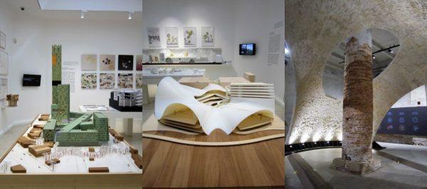 Visita alla XV Mostra Internazionale di Architettura